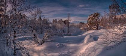 Stora-Sjojalletts-NP-Feb2019-SWE0392