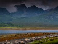 Kilmarie-Isle-of-Skye-290619-SCT-019