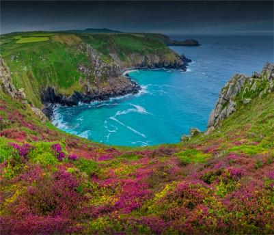 Coastline-Zenor-Cornwall-07-2019-ENG-08548