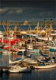 Penzance-Harbour-E0684-14x20