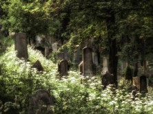 Trebic-Jewish-Cemetery-140619-Czech-Republic-039