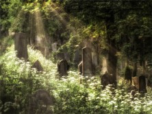 Trebic-Jewish-Cemetery-Sunrays-140619-Czech-Republic-039