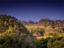 Longridge-Rural-150919-Norfolk-Island-001