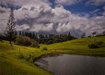 Mission-Valley-Pond-180919-Norfolk-Island-002
