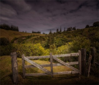 Towards-Country-Lane-230919-Norfolk-Island-891