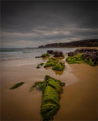 Blackfellas-Point081019-NSW-027