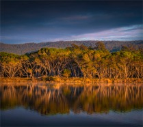 Curalo-Lagoon-Dawn-Reflections-121019-NSW-Eden-236