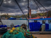 Eden-Wharf-091019-NSW-034
