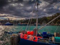 Eden-Wharf-091019-NSW-047