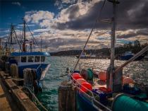 Eden-Wharf-091019-NSW-050