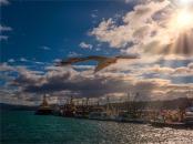 Eden-Wharf-091019-NSW-0SS66