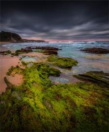 Glass-House-Beach-Narooma-071019-NSW-017