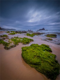 Glass-House-Beach-Narooma-071019-NSW-036