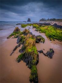 Glass-House-Beach-Narooma-071019-NSW-037
