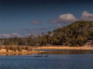 Middle-Lagoon-Mimosa-Rocks-NP-051019-NSW-006