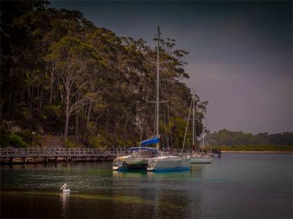 Narooma-Coastal-061019-NSW-010