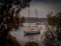 Narooma-Coastal-061019-NSW-073