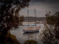Narooma-Coastal-061019-NSW-073
