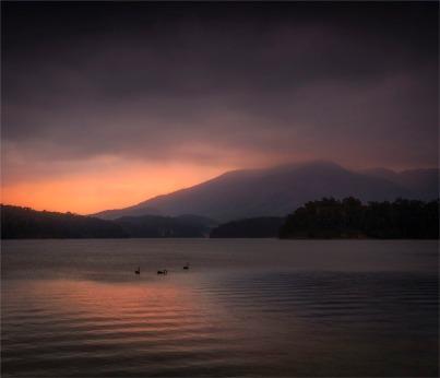 Wallaga-Lake-041019-NSW-0121