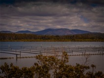 Wapengo-Lake-051019-NSW-015