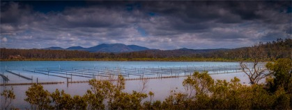 Wapengo-Lake-051019-NSW-016-Panorama
