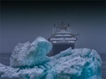 Paulet-Island-11272019-Antarctic-Peninsular-390