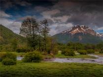 Tierra-Del-Fuego-NP-17112019-Argentina-002