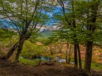 Tierra-Del-Fuego-NP-17112019-Argentina-024