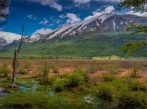 Tierra-Del-Fuego-NP-17112019-Argentina-025