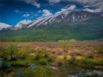 Tierra-Del-Fuego-NP-17112019-Argentina-026