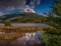 Tierra-Del-Fuego-NP-18112019-Argentina-069