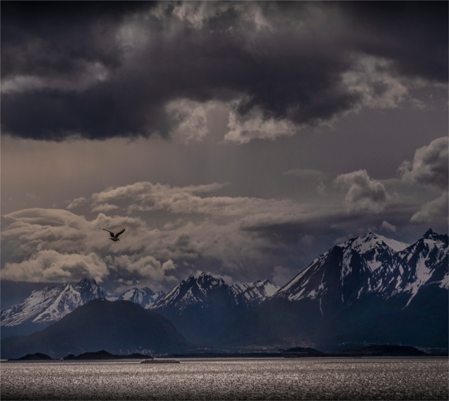 Ushuaia-Beagle-Channel-17112019-Argentina-137