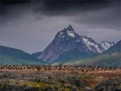 Ushuaia-Beagle-Channel-17112019-Argentina-201