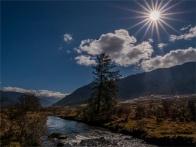 Gangtey-Valley-12102019-Bhutan-0724