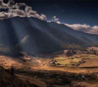 Gangtey-Valley-12102019-Bhutan-GG0808