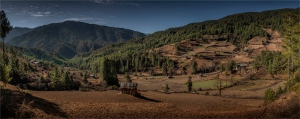Tang-Valley-12152019-Bhutan-2405-Panorama