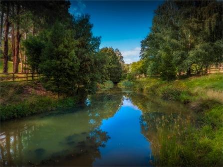 Barwon-River-02042020-Forrest-VIC-0020