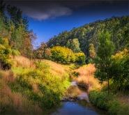 Barwon-River-02042020-Forrest-VIC-06011