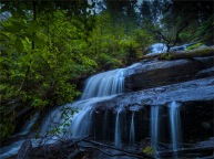 Otway-Ranges-Rainforest-2020-Triplet-Falls-February-VIC-0021