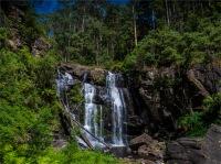 Stevenson's-Falls-02042020-Forrest-VIC-0058