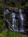 Stevenson's-Falls-02042020-Forrest-VIC-0059