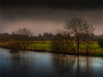 Stour-River-Winter-Flood-2020-Feb-Dorset-ENG-0007