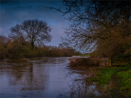 Stour-River-Winter-Flood-2020-Feb-Dorset-ENG-0015