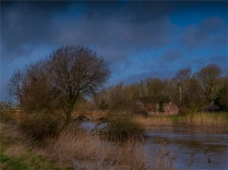 Stour-River-Winter-Flood-2020-Feb-Dorset-ENG-0049
