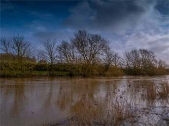 Stour-River-Winter-Flood-2020-Feb-Dorset-ENG-0051