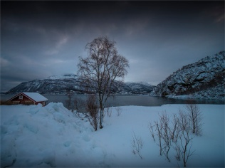 Grovfjord-Winter-03062020-NOR-002