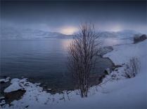 Hansnes-Ringvassoya-02252020-Tromso-NOR-035