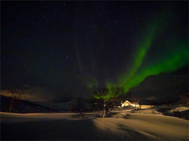 Skogsfjordvatnet-Aurora-2020-Feb-Tromso-NOR-001 copy