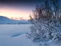 Skogsfjordvatnet-Ringvassoya-02262020-Tromso-NOR-045