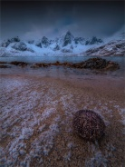 Vareid-Beach-Lofoten-Feb-2020-NOR-063
